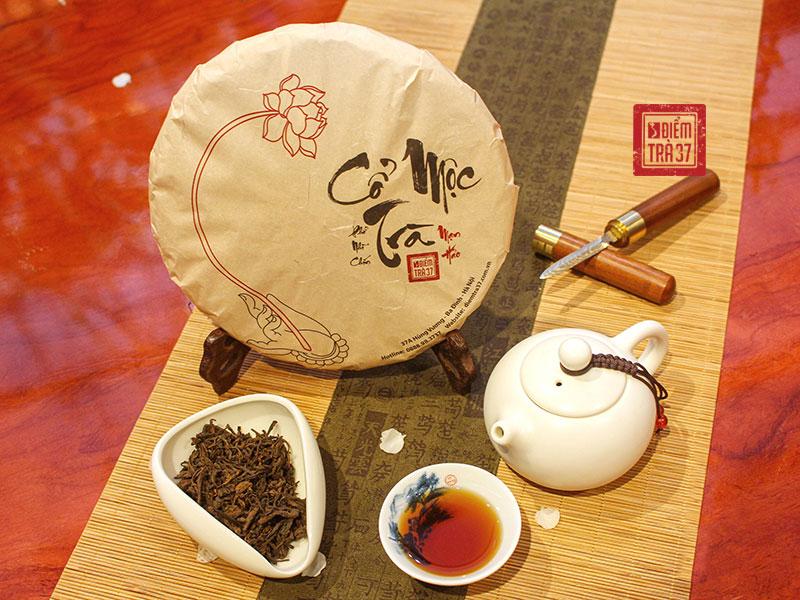 Cổ Mộc Trà - Dòng trà bánh thượng hạng có giá trị bậc nhất tại Điểm trà 37